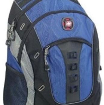 Swissgear Granite Deluxe Laptop Backpack Only 29 99
