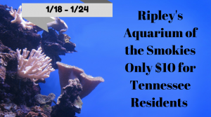Ripley's Aquarium of the Smokies Only $10 for Tennessee Residents 1/18 – 1/24