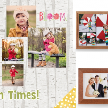 Free 8x10 Collage Free Store Pick Up 449 Value