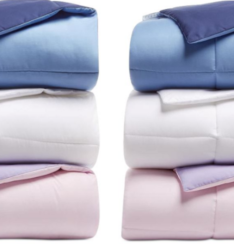 Martha Stewart Down Alternative Comforters Over 80% Off – All Sizes