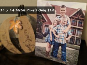 11 X 14 Metal Panels Only $14 + Free Pickup (Regular $39.99)!