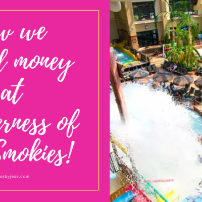Wilderness at the Smokies Waterpark Deals + Money Saving Tips!
